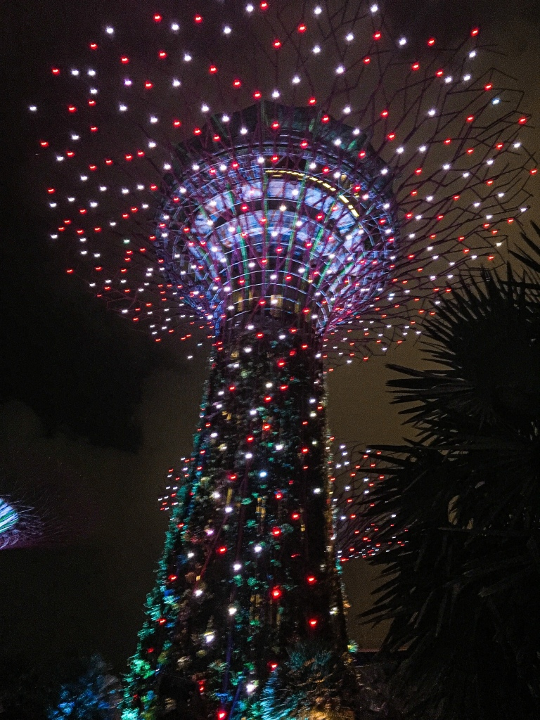 Two Days In Singapore - SuperTree